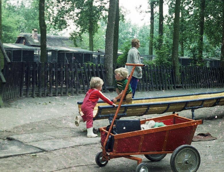 1981-12-epe