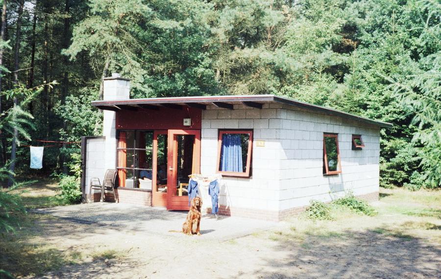 1982-005-dwingelo