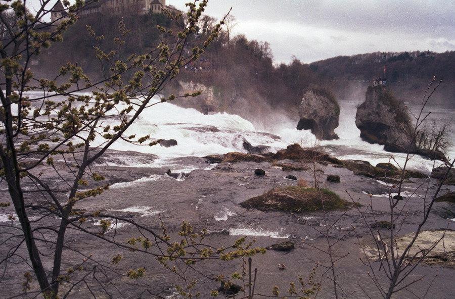 1999-zwarte-woud-11