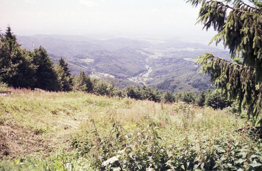 2000-motor-zwarte-woud-05